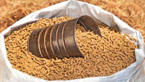 gbs-product-feed-grains